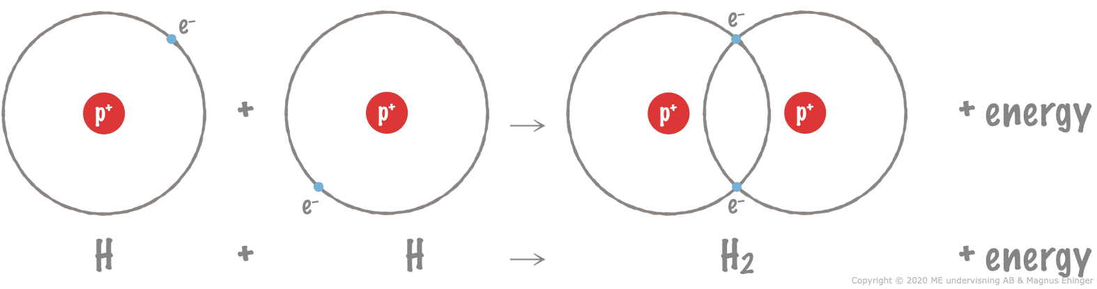 How a hydrogen molecule forms. Energy is always released when bonds form.